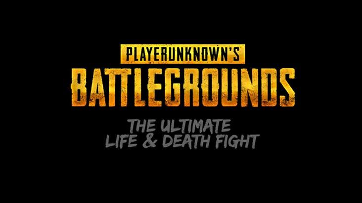 Playerunknown's Battlegrounds — как изменить угол обзора (FOV)