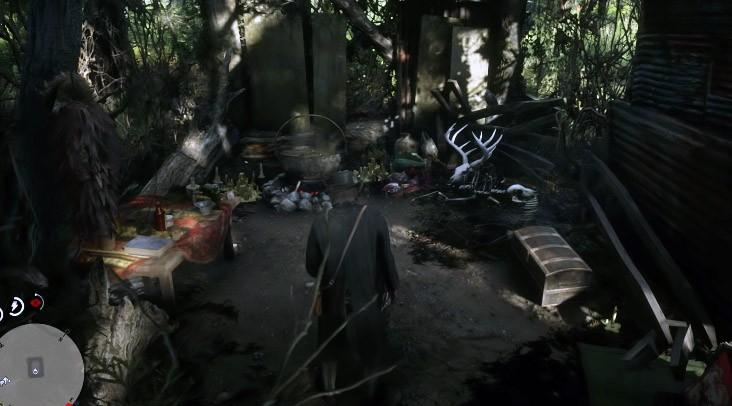 дом ведьмы rdr2