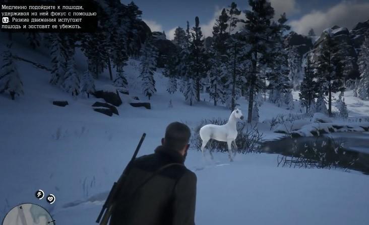 редкая лошадь rdr2