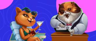 Как играть в казино Cat